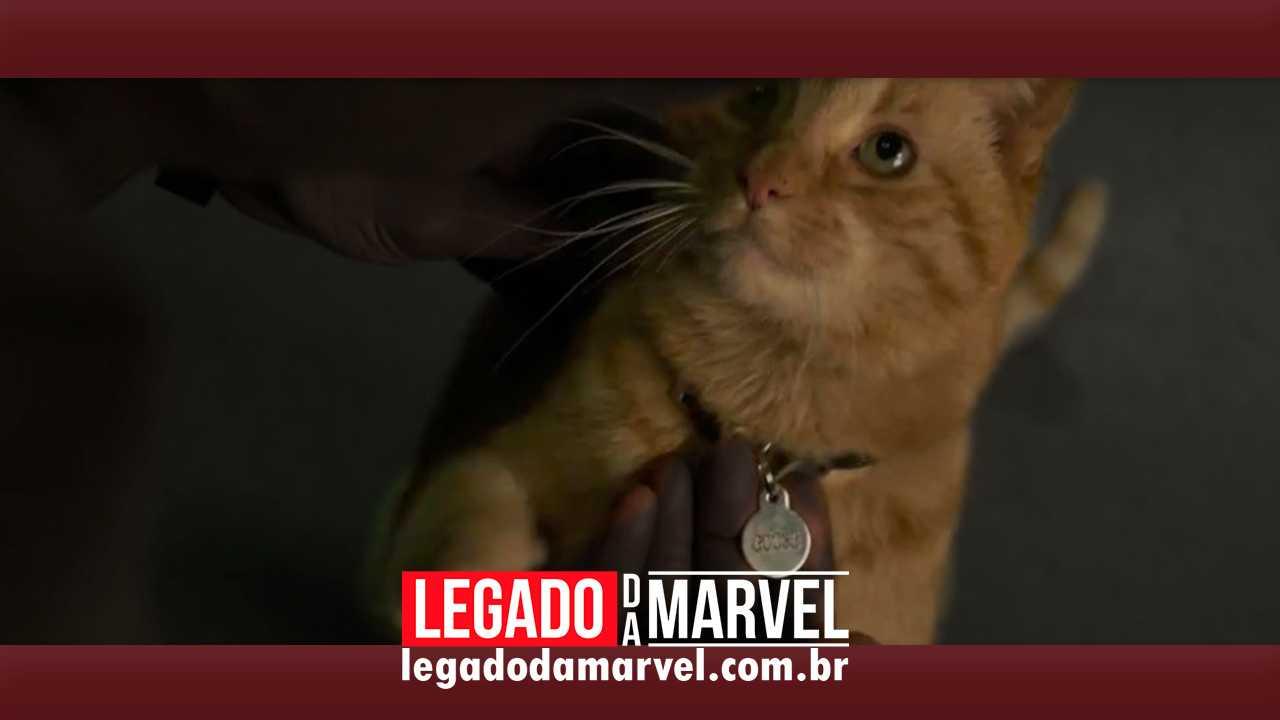 Gato da Capitã Marvel aparece algemado em imagem promocional de brinquedo Hasbro